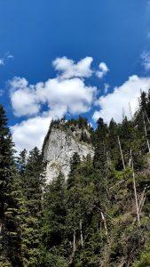 tatrzańska panorama, turnia wśród lasu świerkowego, nad liczne chmury