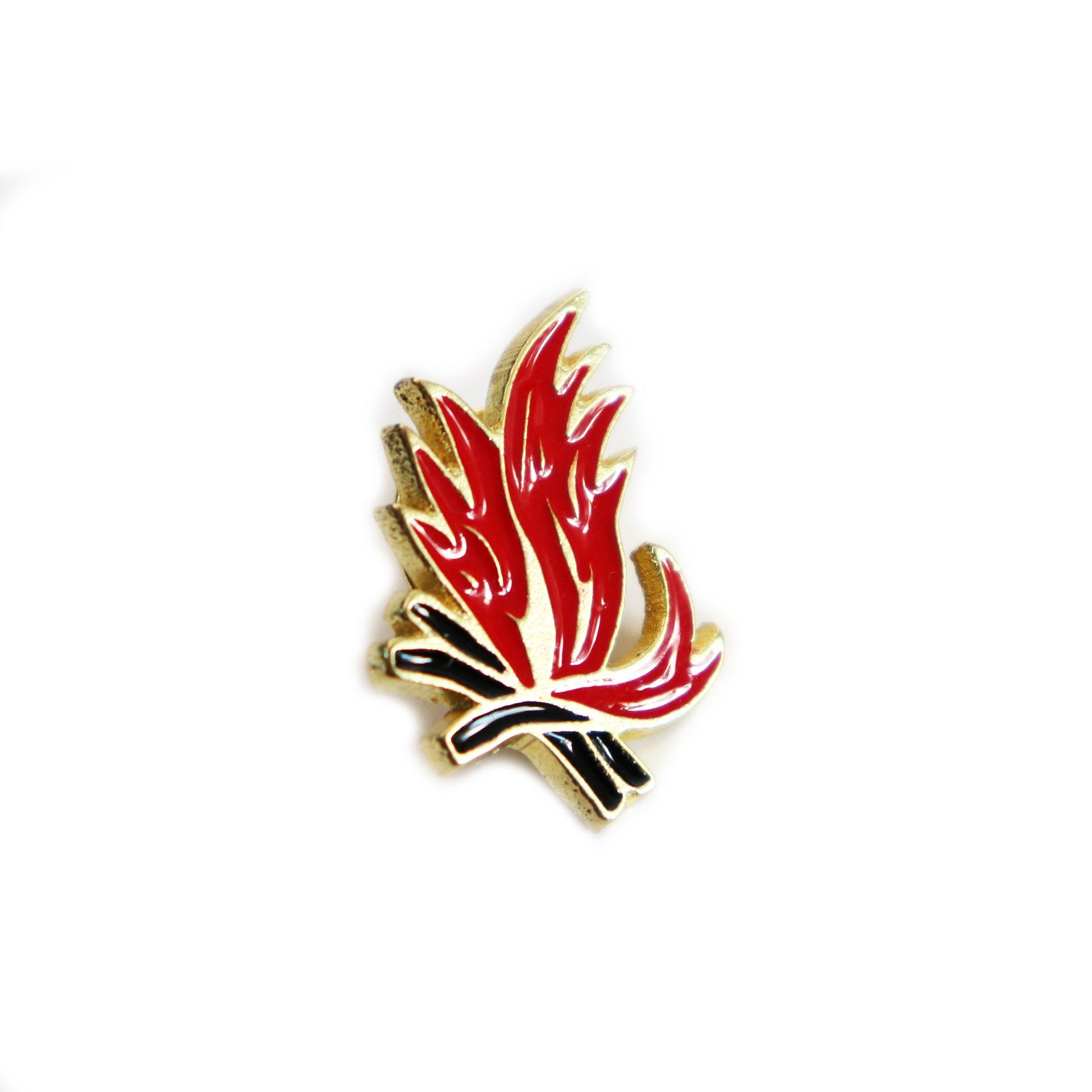 Magnes - Zakopina - ognisko, kolor