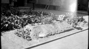groby chowanych w mieście poległych żołnierzy AK i mieszkańców