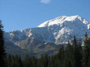 panorama Tatr i las