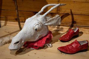 głowa koziołka i buty