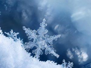 powiększony płatek śniegu