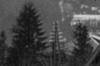 Czarnobiałe zdjęcie – fragment zdjęcia głównego. Słup telegraficzny lub elektryczny pomiędzy dwoma drzewami iglastymi.